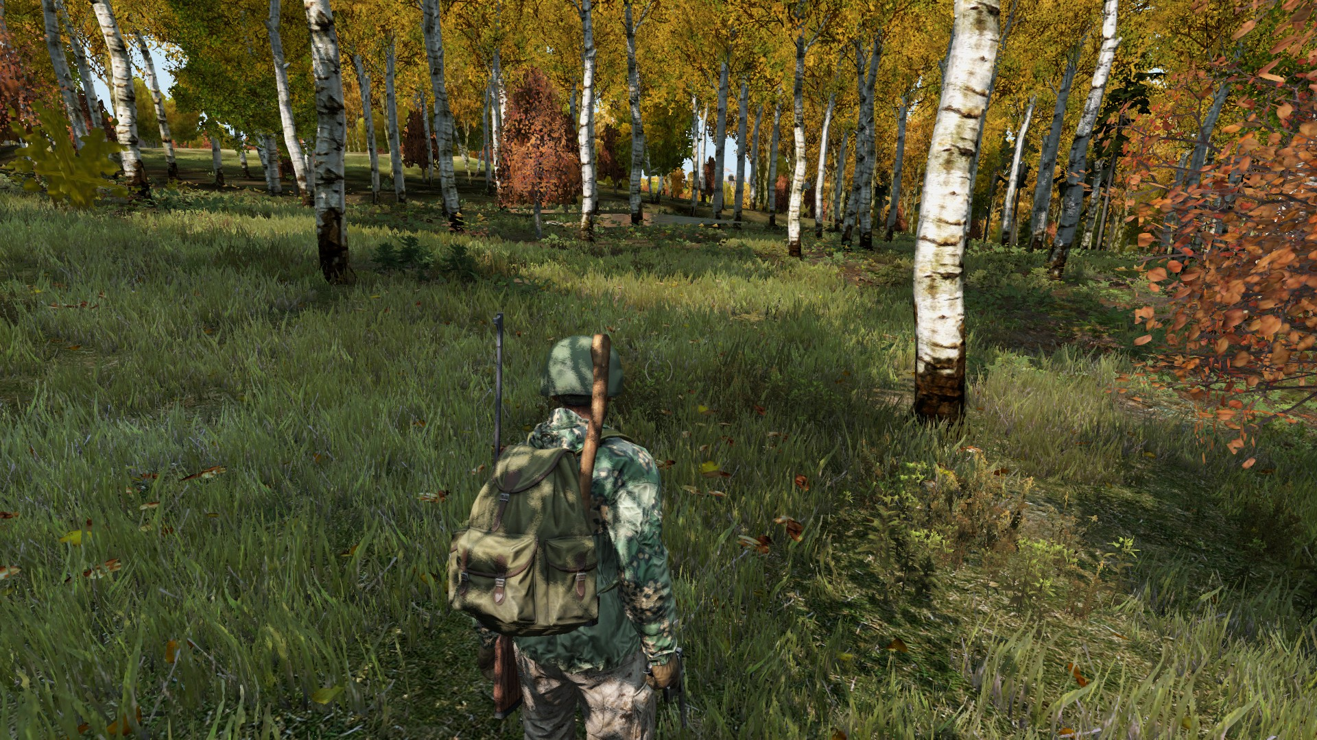 ⚓ T117819 Floating Water/Trees near NW Chernarus Military Area on